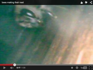 Screen shot 2014-12-12 at 12.47.38 AM